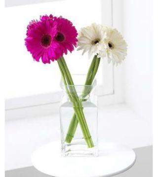 Daisy-Drama-Bouquet